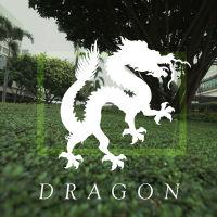 box_dragon