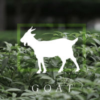 box_goat
