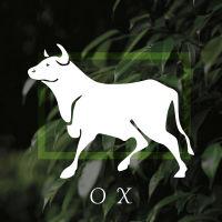 box_ox