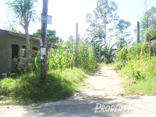 98 sqm house and lot sale in akbar
